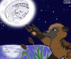Układanka Księżyc i niedźwiedź