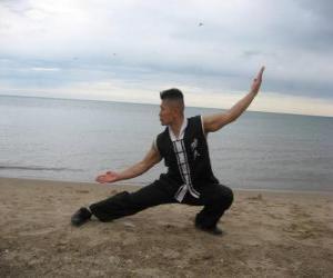 Układanka Kung Fu
