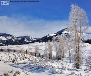 Układanka Lamar Valley, blisko Parku Narodowego Yellowstone, Wyoming, Stany Zjednoczone