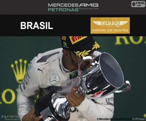 Układanka Lewis Hamilton, Grand Prix Brazylii 2016