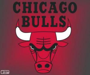 Układanka Logo Chicago Bulls, zespół NBA. Dywizja Centralna, Konferencja wschodnia