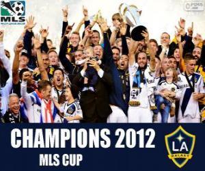 Układanka Los Angeles Galaxy, mistrz MLS Cup 2012