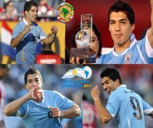 Układanka Luis Suarez najlepszym piłkarzem na Copa America 2011