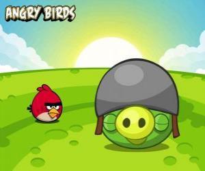 Układanka Mały czerwony ptak obok świnia w kasku