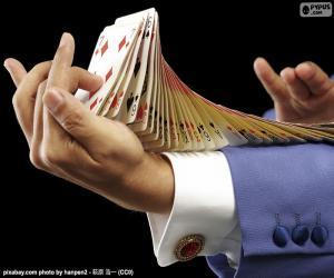 Układanka Maga, sztuczka karty