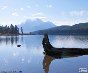 Układanka Maligne Lake, Kanada