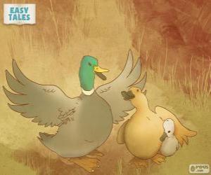 Układanka Mama kaczka chroni brzydkie kaczątko