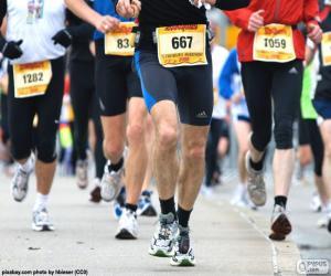 Układanka Maraton