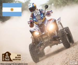 Układanka Marcos Patronelli, Dakar 2016