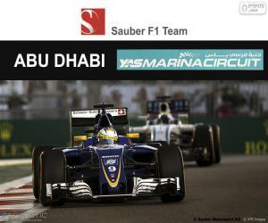 Układanka Marcus Ericsson, Grand Prix Abu Zabi 2016