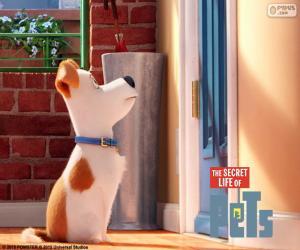 Układanka Max przed drzwiami