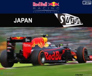 Układanka Max Verstappen, Grand Prix Japonii 2016
