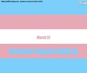 Układanka Międzynarodowy Dzień Widoczności Transseksualistów