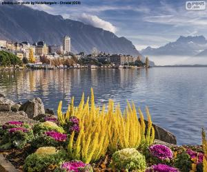 Układanka Montreux, Szwajcaria