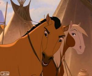 Układanka Mustang i Rosa w miejscowości Lakota