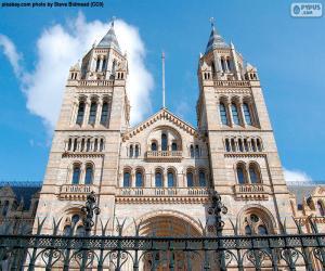Układanka Muzeum historii naturalnej, Londyn