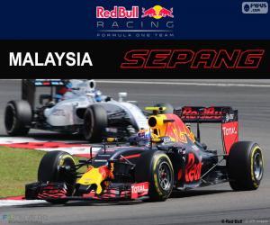 Układanka M.Verstappen, Grand Prix Malezji 2016