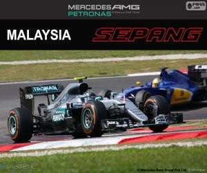 Układanka N. Rosberg, Grand Prix Malezji 2016