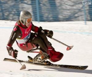 Układanka narciarz Paraolimpijskich w konkurencji slalom