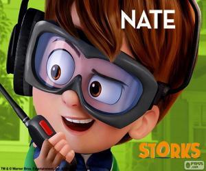 Układanka Nate, Bociany