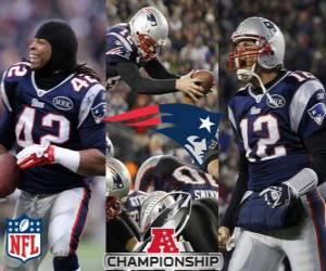 Układanka New England Patriots AFC mistrz 2011