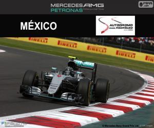Układanka Nico Rosberg, GP Meksyku 2016