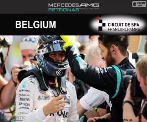 Układanka Nico Rosberg, Grand Prix Belgii 2016
