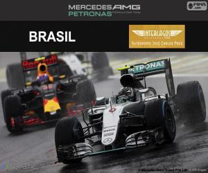 Układanka Nico Rosberg, Grand Prix Brazylii 2016