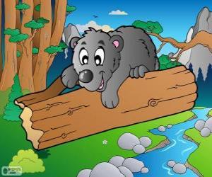 Układanka Niedźwiedź