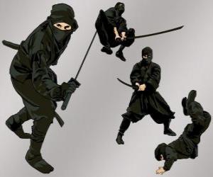 Układanka Ninja w różnych pozycjach