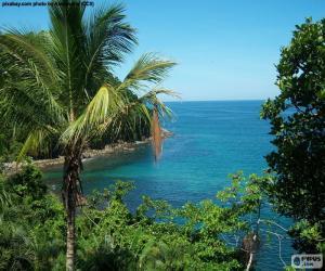 Układanka Od tropikalnej wyspie morza