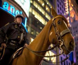 Układanka Oficer policji na koniach