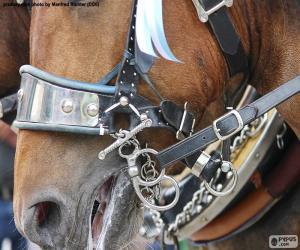 Układanka Ogłowie konia