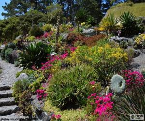 Układanka Ogród botaniczny