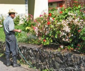 Układanka Ogrodnik pojenia wiosną