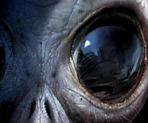 Układanka Oko cudzoziemca