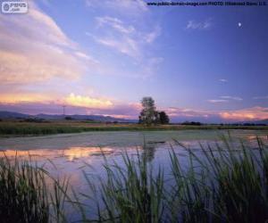 Układanka Park Narodowy Metcalf Lee, Montana, Stany Zjednoczone Ameryki