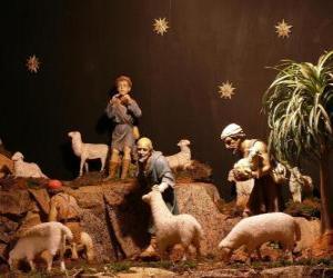 Układanka Pasterze znaków Narodzenia