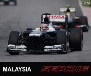 Układanka Pastor Maldonado - Williams - Sepang 2013