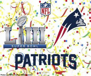 Układanka Patriots, Super Bowl 2019