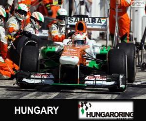 Układanka Paul di Resta - Force India - Hungaroring, 2013