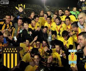 Układanka Peñarol Montevideo, mistrz pierwszej ligi piłki nożnej 2012-2013, Urugwaj