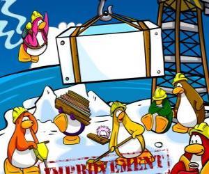 Układanka Penguins w pracy w Club Penguin
