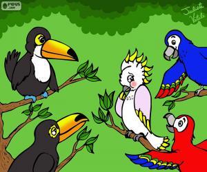 Układanka Pięć ptaków Julieta Vitali