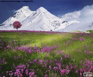 Układanka Pięknej scenerii Alp