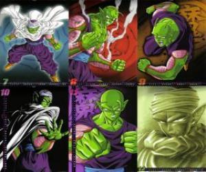 Układanka Piccolo Piccolo Daimao potwora syn urodził się zemścić na Goku. Pochodzi z planety Namek. Jest pierwszym nauczycielem Son Gohan.