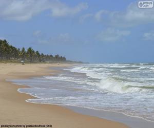Układanka Plaża Imbassai, Brazylia