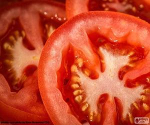 Układanka Plastry pomidora