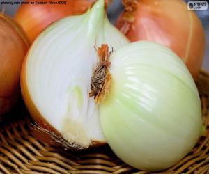 Układanka Połowę cebuli