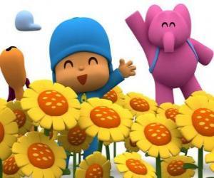 Układanka Pocoyo i jego koledzy w polu słoneczników